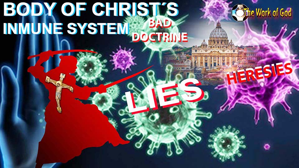 The Body of Christ's Immune System. Catholic, defend Your Church