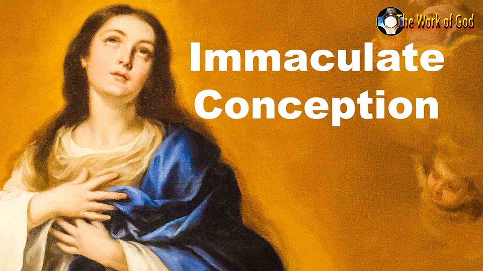 Immaculate Conception - The blessed Virgin Mary